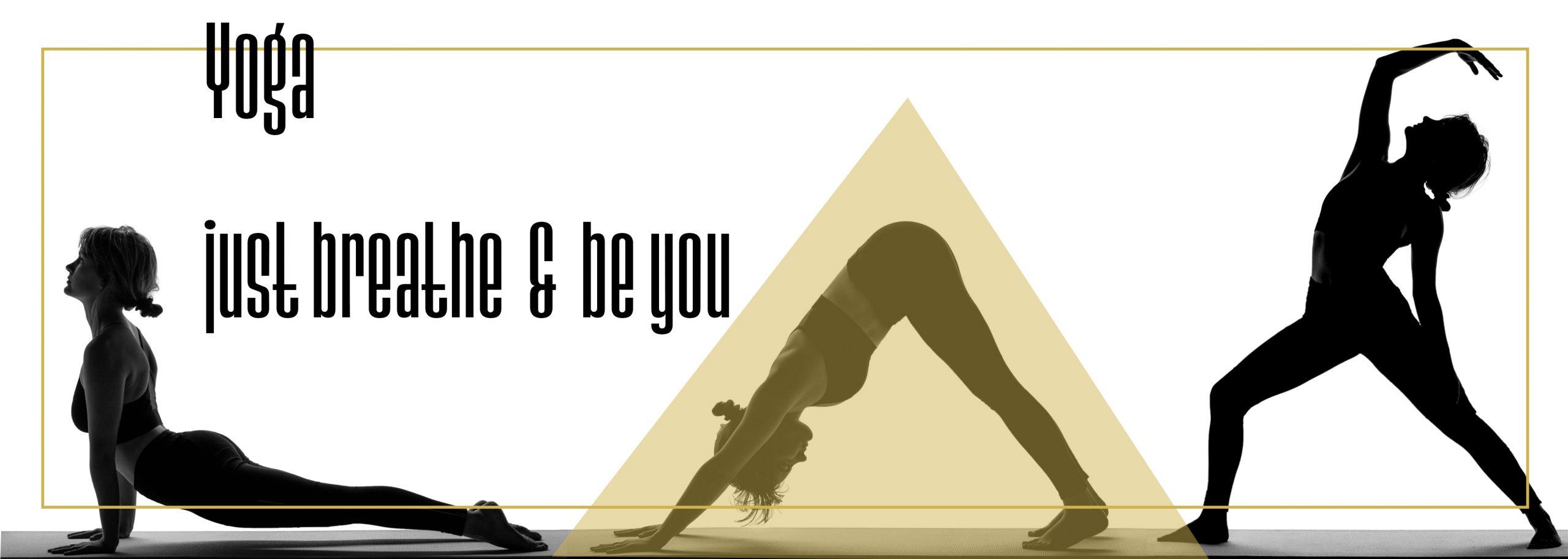 Silhouette Yoga Layout Grafikdesign Fotograf